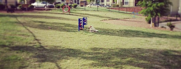 Dog Park is one of parks.