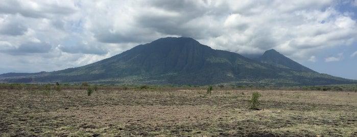 Savana Bekol is one of Java / Indonesien.