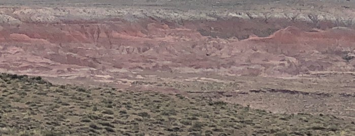 Petrified Forest National Park Visitor Center is one of Orte, die David gefallen.