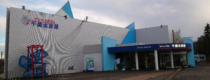 Salmon hometown Chitose aquarium is one of Tempat yang Disukai のぞ.