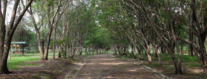 Parque de la Solidaridad Iberoamericana is one of Mexico Bucket List.