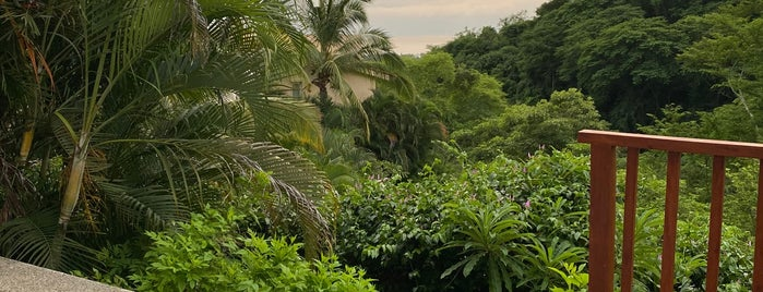 Grand Sirenis Matlali Hills Resort & Spa is one of Isela : понравившиеся места.