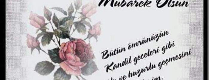 Kurtuluş Camii is one of Konya Meram Mescit ve Camileri.
