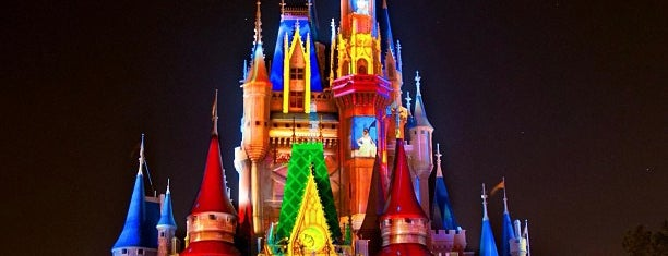 Magic Kingdom® Park is one of Lugares favoritos de Tyler.
