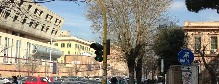 Viale Dell'università is one of Orte, die Mirta gefallen.