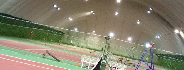 Теннисный Центр Жулебино is one of Activ.