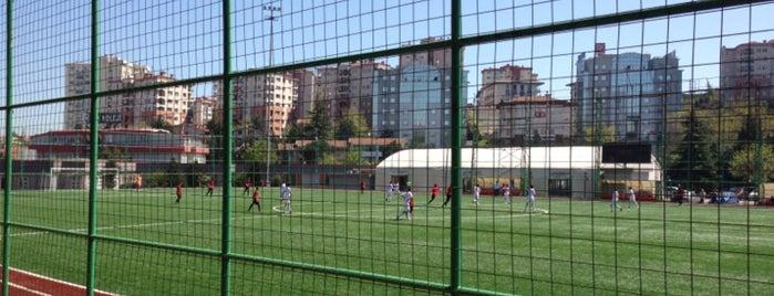 Beşiktaş Çilekli Tesisleri is one of Lugares favoritos de Güçlü.
