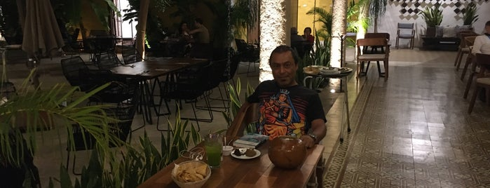 Museo de la Gastronomía Yucateca is one of Javierさんのお気に入りスポット.