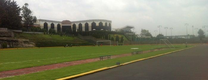 Estadio Olimpico Jose Y Julian Abed is one of สถานที่ที่บันทึกไว้ของ Adrian.
