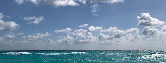 Playa is one of Cristina 님이 좋아한 장소.