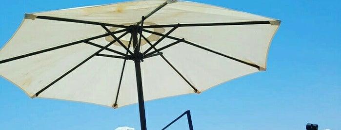 Zorbas Beach is one of Crete.
