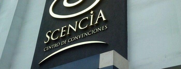 Scencia is one of Locais curtidos por Pedro Enrique.