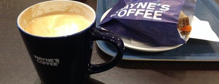 Wayne's Coffee is one of Matkus Shopping Center.