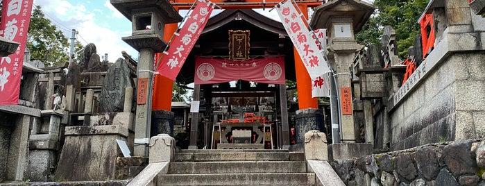 Sannomine (Shimosha Shinseki) is one of 伏見.