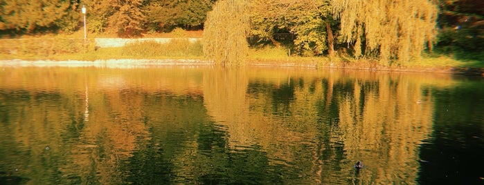 Botanischer Garten is one of J : понравившиеся места.