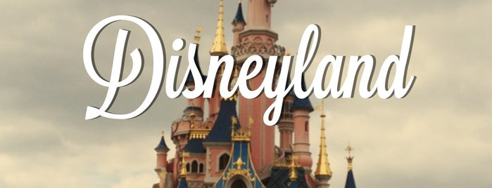 Disneyland® Paris is one of Bonjour Paris.