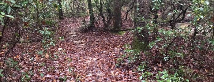Cambell Trail is one of Olesya: сохраненные места.