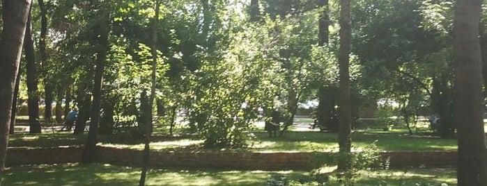 Halk Bahçesi is one of สถานที่ที่ Gizem ถูกใจ.
