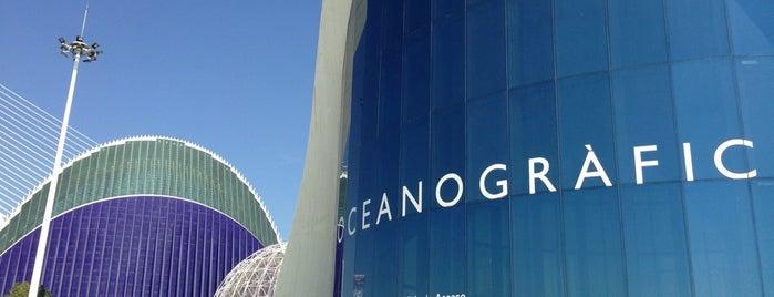 L'Oceanogràfic is one of Valencia.