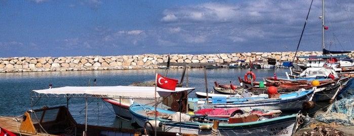 Yeni Liman is one of Veni Vidi Vici İzmir 1.