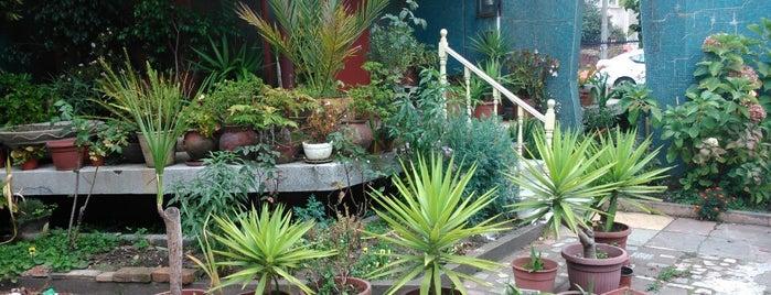 Barrio Universitario is one of Lugares favoritos de Oliver.