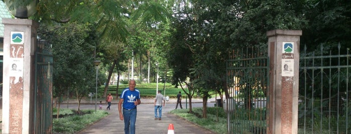 Parque Municipal Américo Renné Giannetti is one of Belo Horizonte / MG.