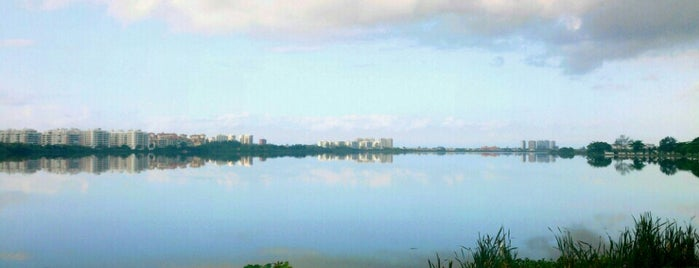 Lagoa de Jacarepaguá is one of Marcello Pereira : понравившиеся места.
