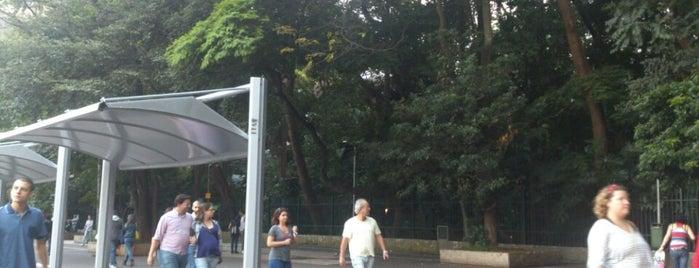 Parque Tenente Siqueira Campos (Trianon) is one of São Paulo / SP.