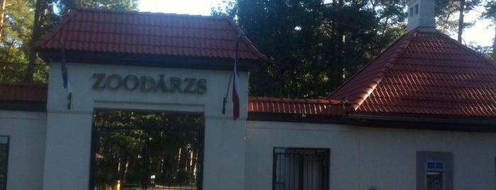 Rīgas Zooloģiskais Dārzs is one of AtputasBazes.lv.