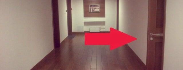 STUDIES & CAREERS, SPb Office is one of Orte, die Anastasia gefallen.