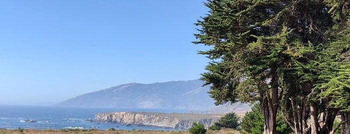 Plaskett Creek Campground is one of Big Sur.