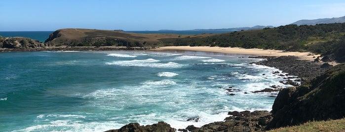 Monee Beach Nature Preserve is one of Australie.
