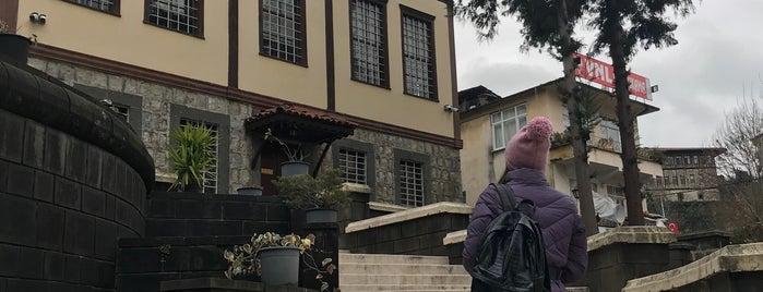 Rize Müzesi is one of RİZE.