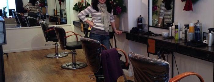 NY Hair Co. is one of สถานที่ที่ Mark ถูกใจ.