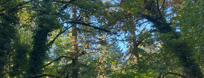 Forest Park is one of Pacific NW.
