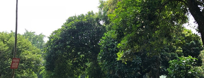 Ragunan Zoo is one of !Jakarta?.