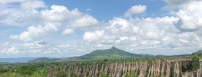 La Plantation is one of Culture (2).
