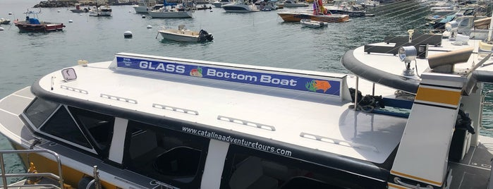 Glass Bottom Boat Tour is one of Ensenada Cruise.