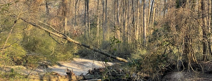 Chatahochee River National Recreation Area Palisades is one of Atlanta.