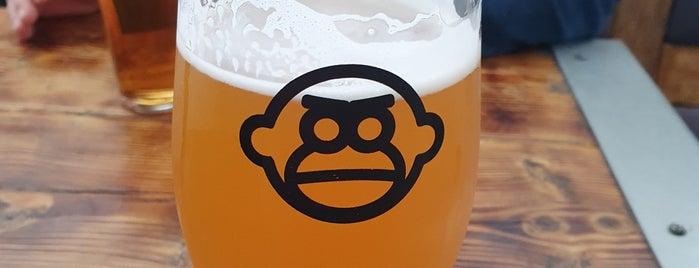 Northern Monkey Beer Co. is one of Carl 님이 좋아한 장소.