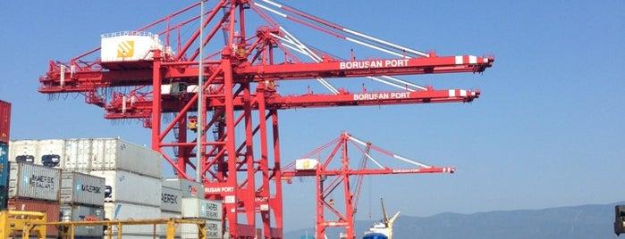 Borusan Limanı is one of Aylin'in Beğendiği Mekanlar.