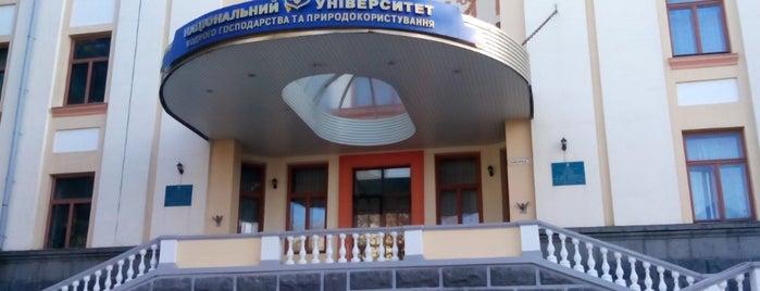 Національний університет водного господарства та природокористування / НУВГП is one of Rivne, July 2014.
