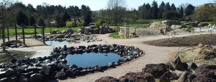 Loki-Schmidt-Garten | Neuer Botanischer Garten is one of #myhints4Hamburg.