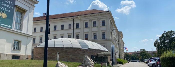 Magyar Természettudományi Múzeum is one of Carl : понравившиеся места.