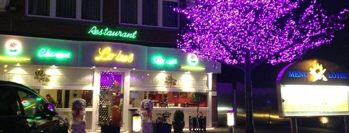 Restaurant Lotus is one of Lieux qui ont plu à Vanessa.