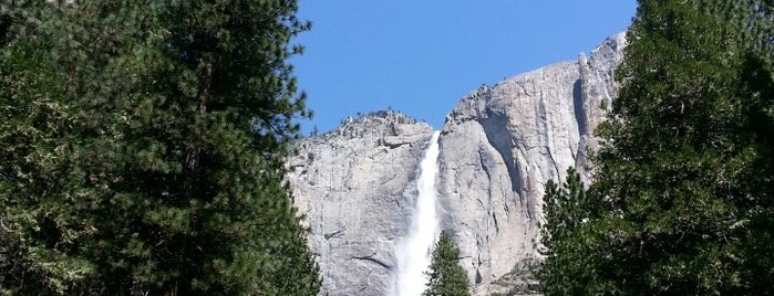 Yosemite Falls is one of US of A.