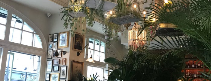 Mr Fogg's House of Botanicals is one of New London Openings 2018.