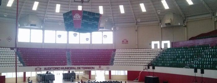 Auditorio Municipal de Torreón is one of Distrito Colón.