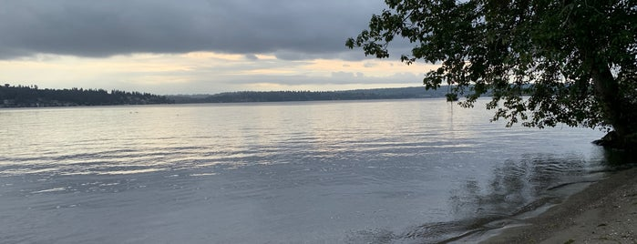 Matthews Beach Park is one of Seattle's 400+ Parks [Part 2].