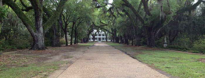 Rosedown Plantation is one of Museums.